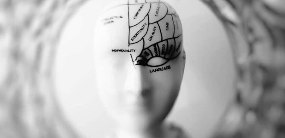 Neurolingwistyka